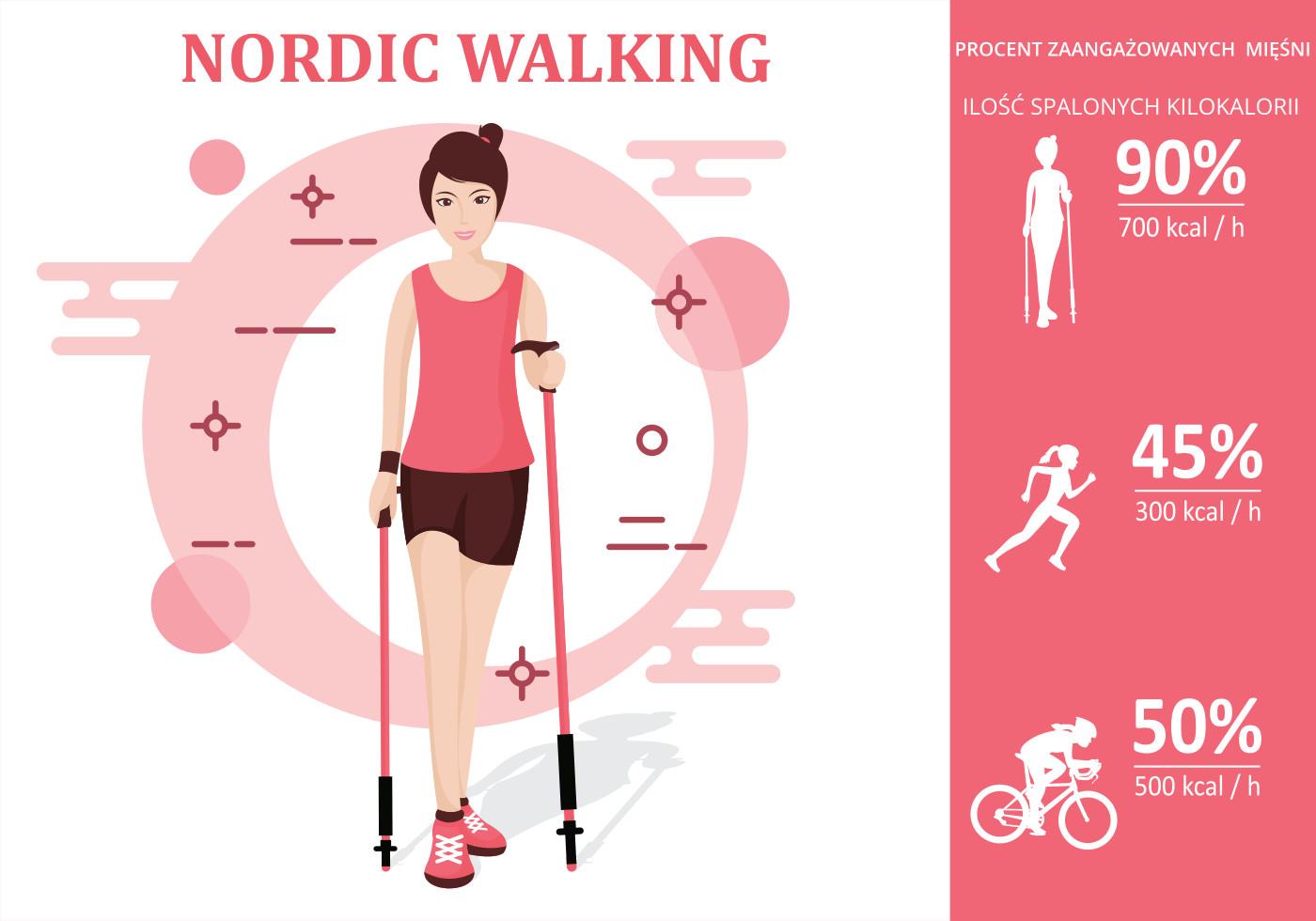 Mięśnie w Nordic Walking